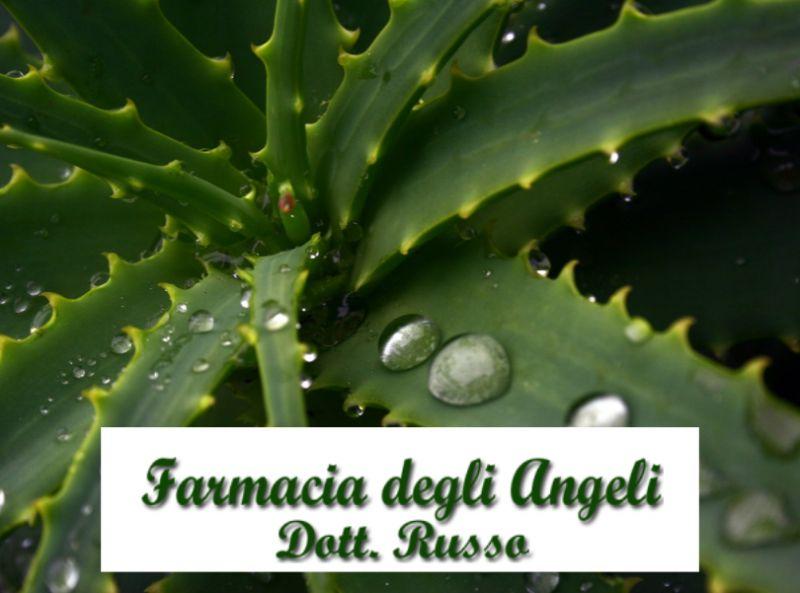 offerta phytogarda aloe vera-promozione depurativa detox-farmacia degli angeli-bergamo