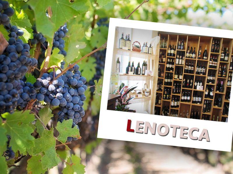 offerta vino in bottiglia pietrasanta - promozione vino in bottiglia camaiore - vino viareggio