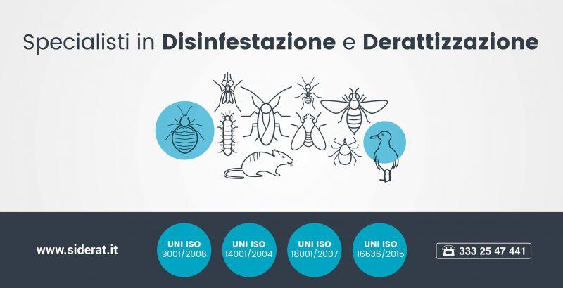 offerta servizi derattizzazione disinfestazione - servizi igiene ambientale - siderat