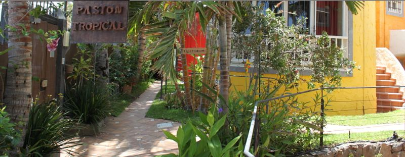 Offre - Spàcial vacances Gay é Gran Canaria prés du Yumbo Centrum - PASION TROPICAL