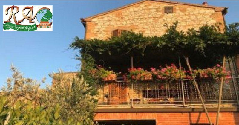 offerta appartamenti in affitto Trequanda - occasione appartamenti in affitto Siena e provincia