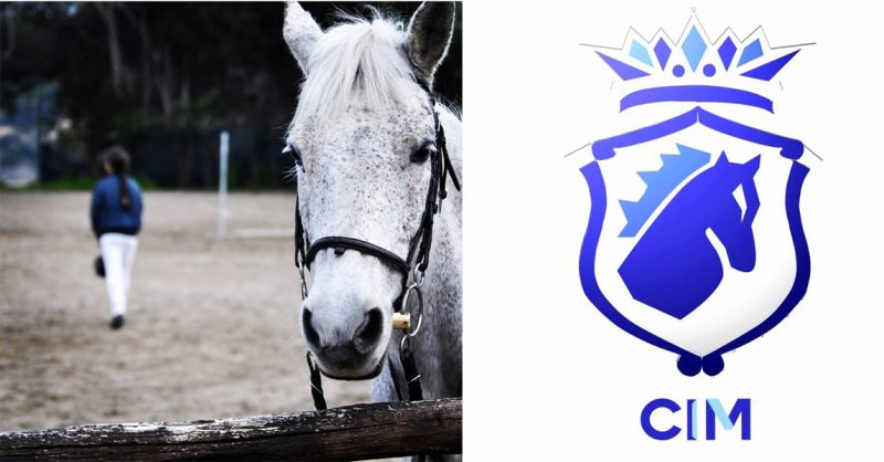 offerta passeggiate a cavallo scuola di equitazione napoli - occasione centro ippico napoli