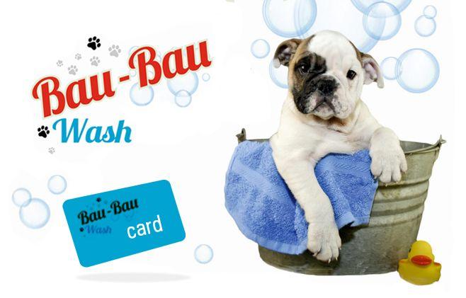 offerta nuova toeletta cani self service - promozione toelettatura cani in centro