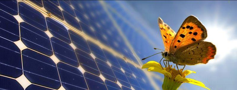 E Mad Solution offerta risparmio energetico - promozione energia rinnovabile Teramo