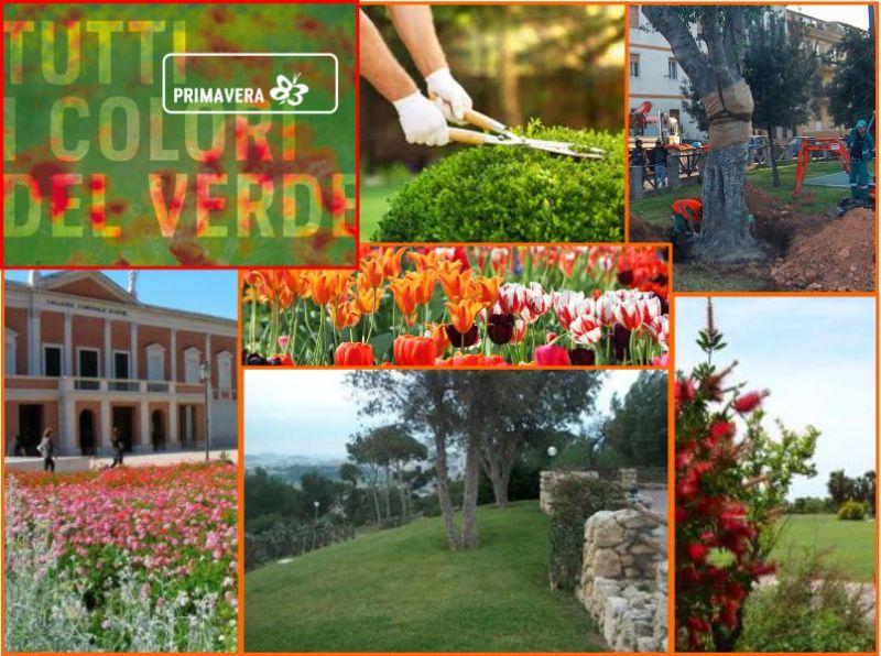 promozione manutenzione giardini - Primavera 83 Elmas